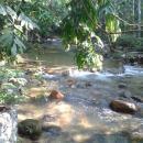 gambar sungai