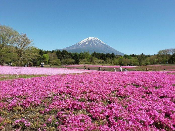 pakej-murah-tokyo-osaka-trip-hana-haru