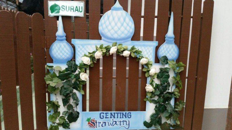 genting-strawberry-leisure-farm-11
