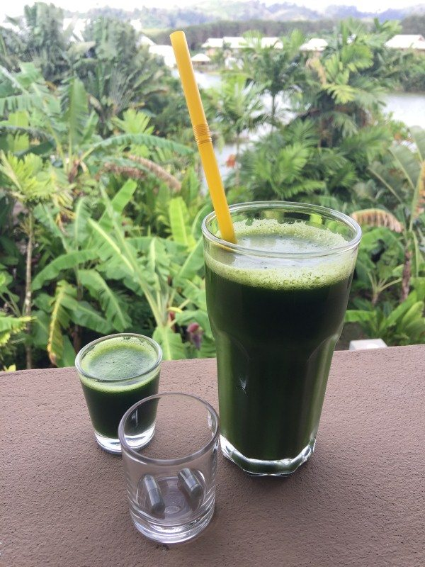 the-lifeco-phuket-green-juice-2