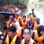 mangroove 8