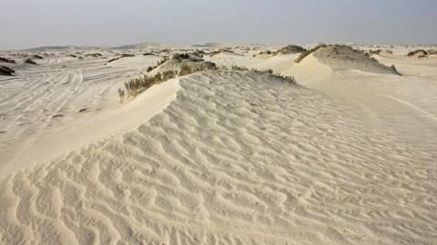 Qatar Sealine