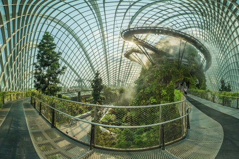 Singapore's Colossal Greenhouses: Cloud Forest Dome