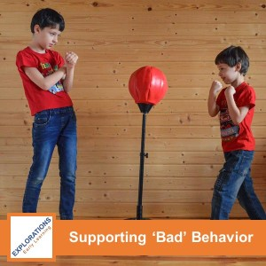 Supporting 'Bad' Behavior