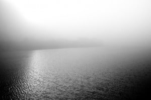 navarro river fog