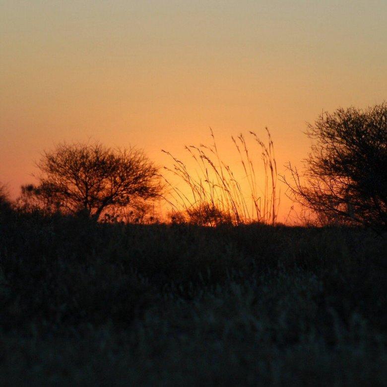 Botswana - ExplorationVacation - 09-13 sunset