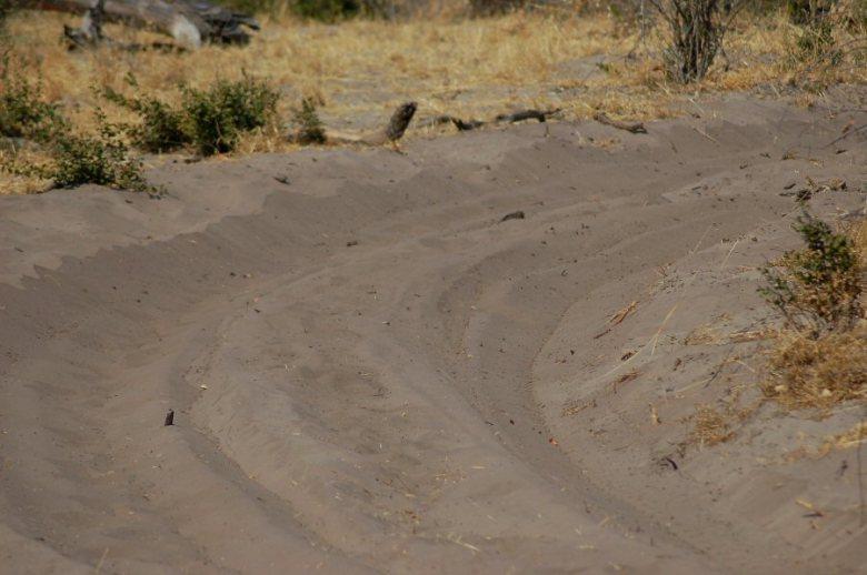 Botswana - ExplorationVacation - 2005-09-22_07-38-14 sand roadway