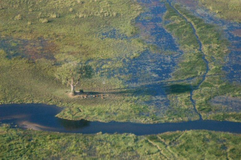 Botswana Okavango - ExplorationVacation - 2005-09-19_10-15-23 aerial