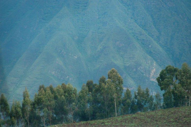 Peru - ExplorationVacation 2005-12-30_09_47_21