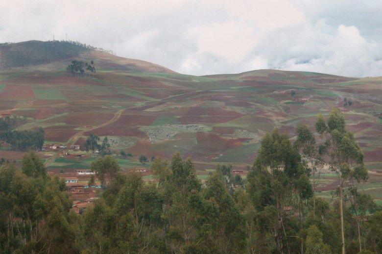 Peru - ExplorationVacation 2005-12-30_09_48_12