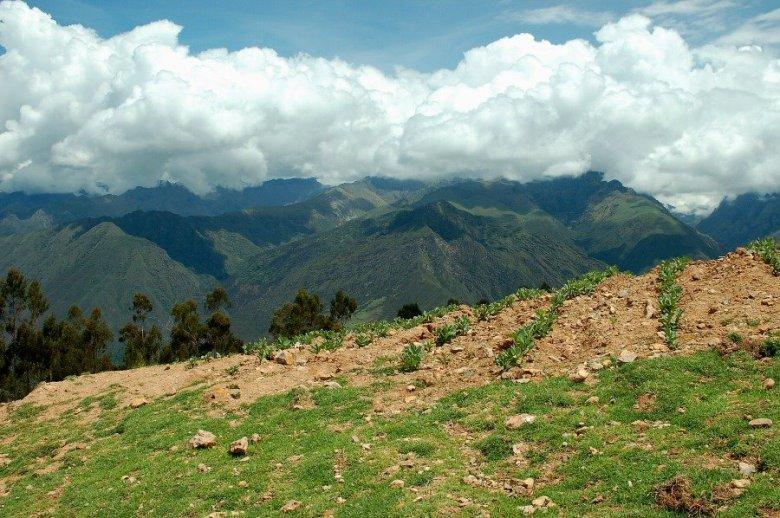 Peru - ExplorationVacation 2006-01-01_10_44_56%20fields