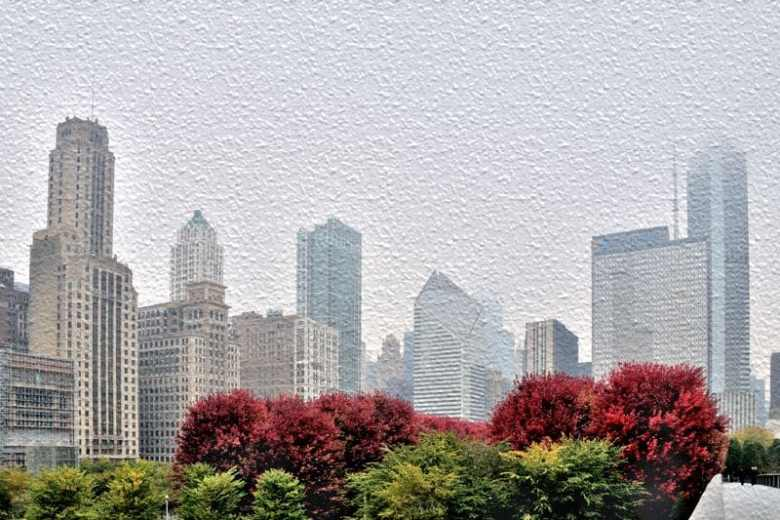 Chicago skyline with fall trees
