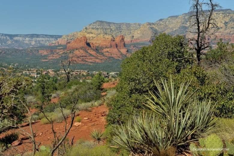 DSC_4258 Arizona