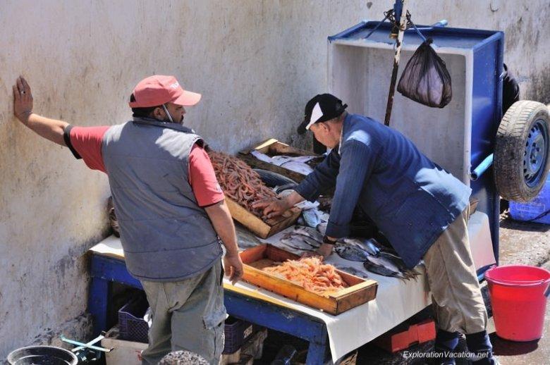 Essaouira fish market 34 DSC_8495 Morocco