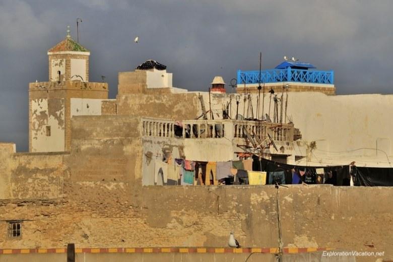 Essaouira - view of the roof of Taros Cafe  DSC_8068