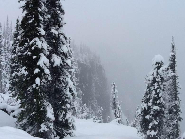 Glacier National Park - Near Sperry Chalet 14430706716_45b960c4e7_b