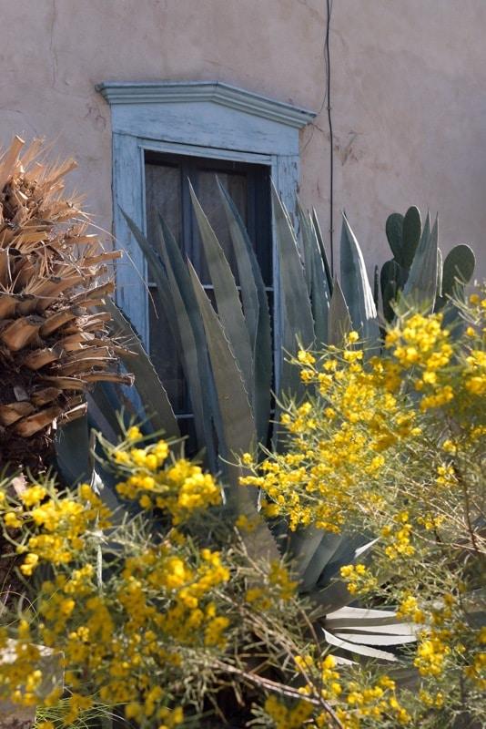 Main Avenue Tucson Sam Hughes House 20140212-DSC_4579