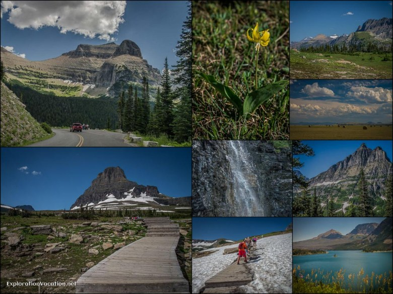 Collage - July 29 - Going to the Sun Road Again