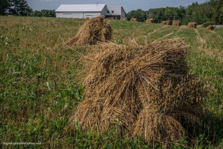 haystacks and barns - ExplorationVacation.net
