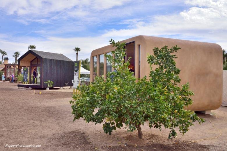 Micro-Dwell at the Shemer Scottsdale Arizona 29 - Dan Dwyer Green Rhino Pod - ExplorationVacation 20140216-DSC_6010