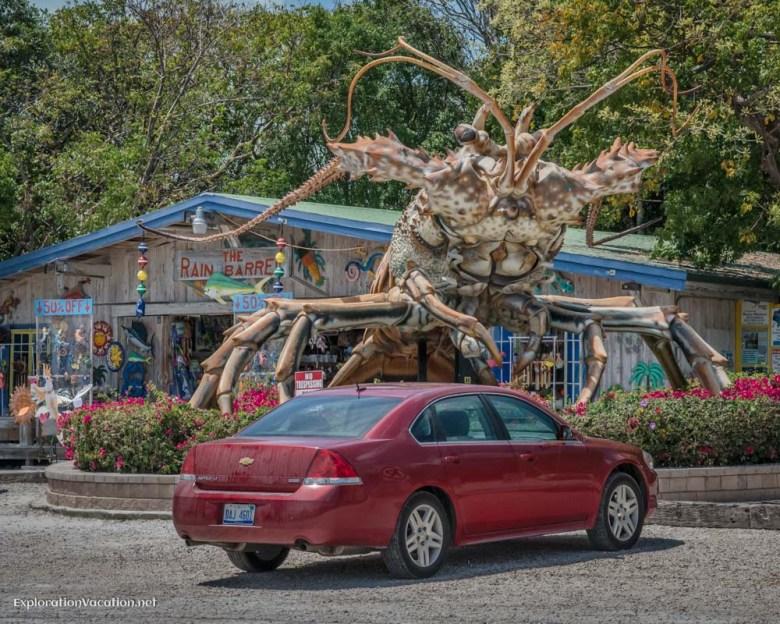 Lobster attack in the Florida Keys - ExplorationVacation.net