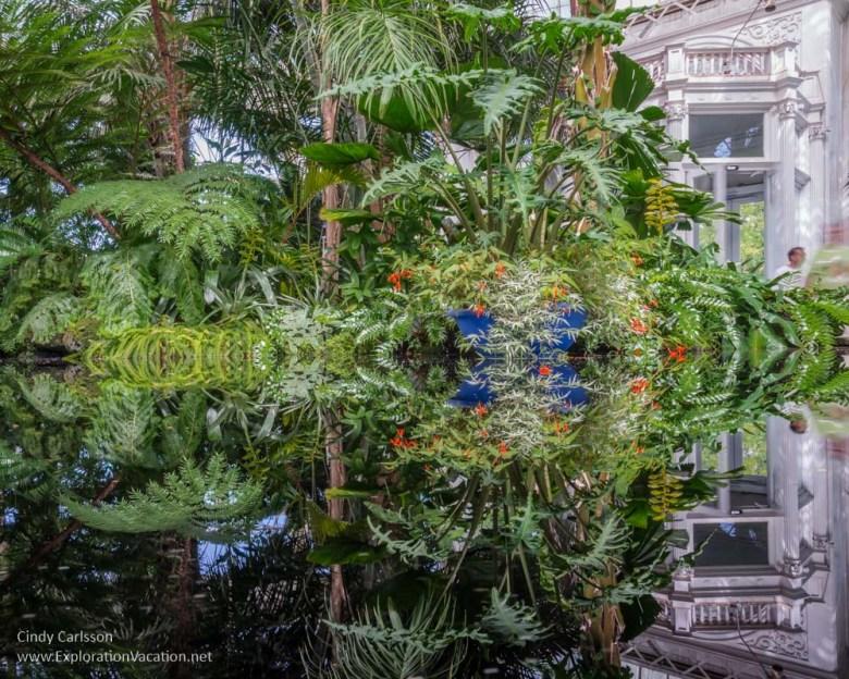 reflecting pool New York Botanical Garden