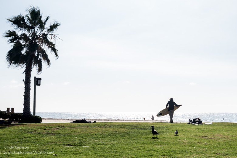 surfers walking above the beach