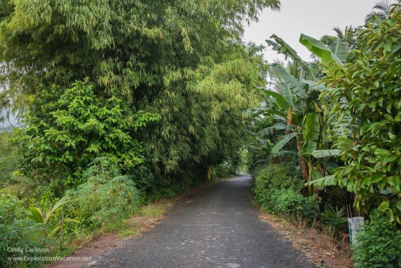 village road Mekong Delta Vietnam -ExplorationVacation