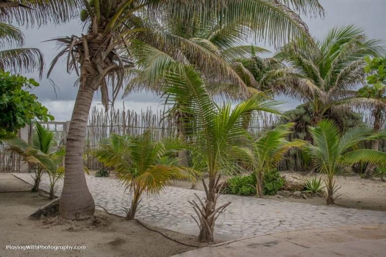 Zamas Tulum Mexico - www.ExplorationVacation.net