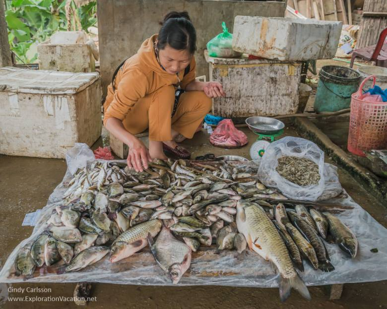 market in northern Vietnam - Exploration Vacation