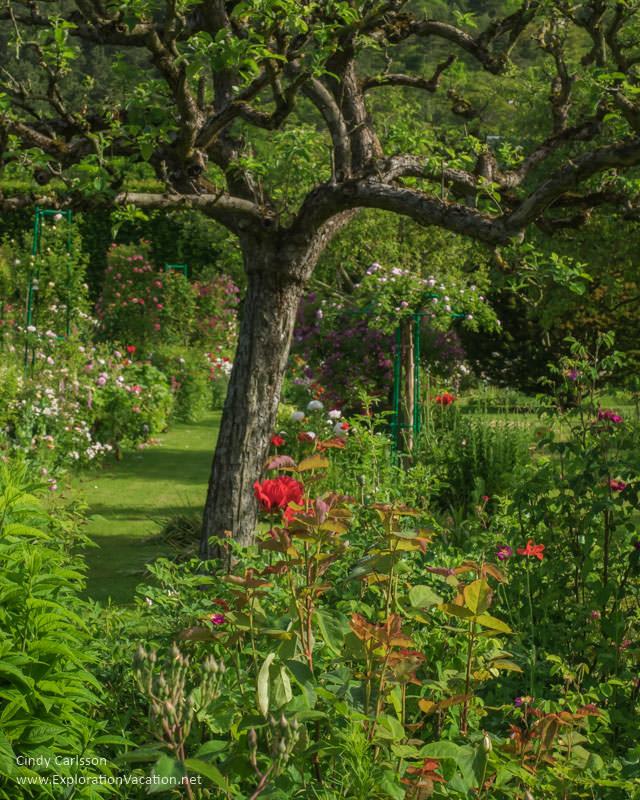 Clos Normand Monet's Garden Giverny France - www.explorationvacation.net
