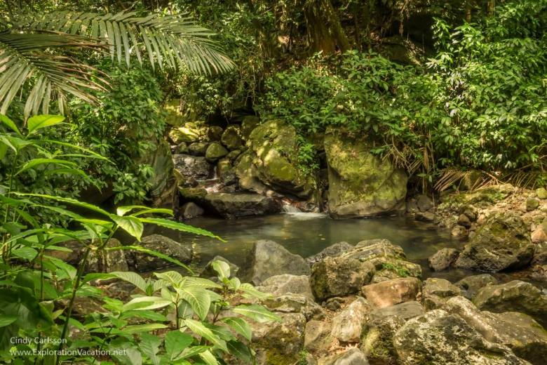 Waterfalls in El Yonque, Puerto Rico's tropical rain forest - www.ExplorationVacation.net