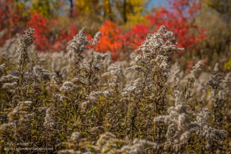 Fall in Minnesota's Frontenac State Park - www.ExplorationVacation.net