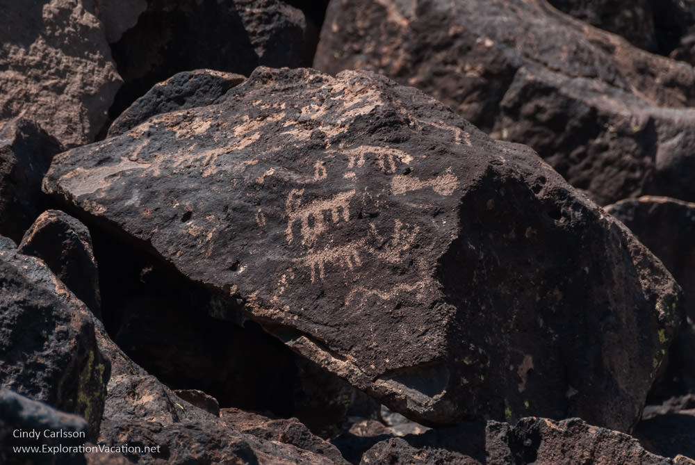 View Ancient symbols at Deer Valley Petroglyph Preserve, Phoenix