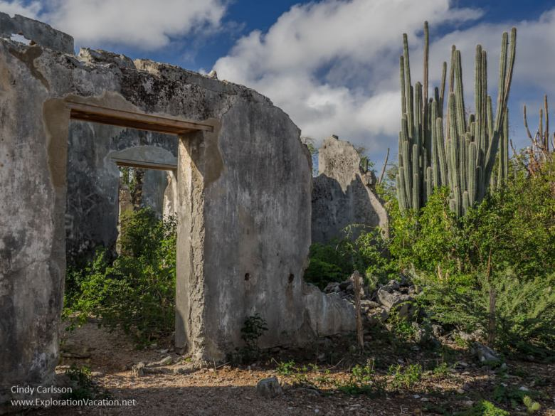 Zorgvlied Ruins in Christoffel National Park Curacao - ExplorationVacation.net
