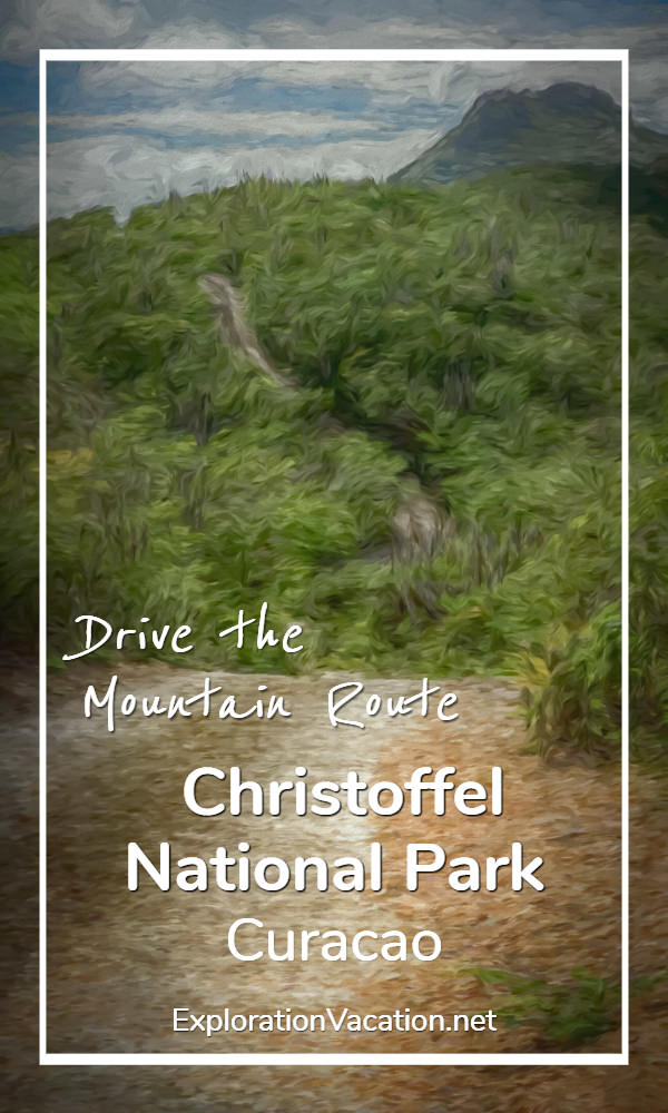 Drive the Mountain Route through Curacao's Christoffel National Park - ExplorationVacation.net