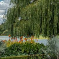 Lakeside gardens at the Chicago Botanic Garden - ExplorationVacation.net
