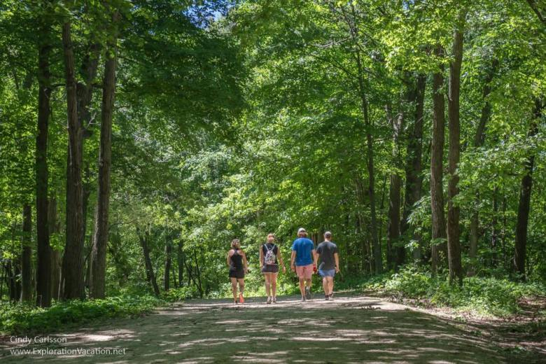 group of people walking down a narrow road through a forest