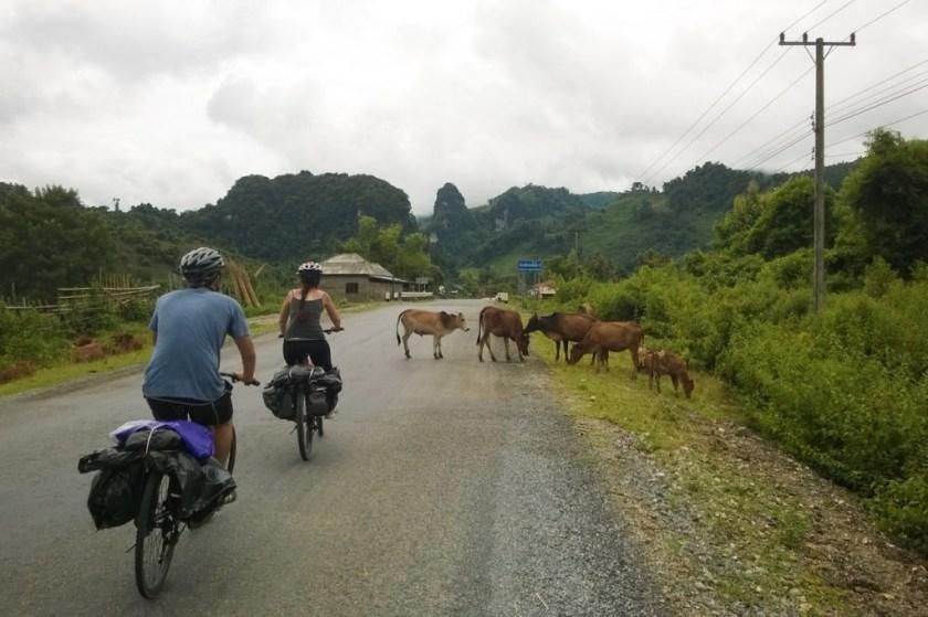 laos-bicycle-tour-luang-prabang-vang-vieng-tiger-trail-693