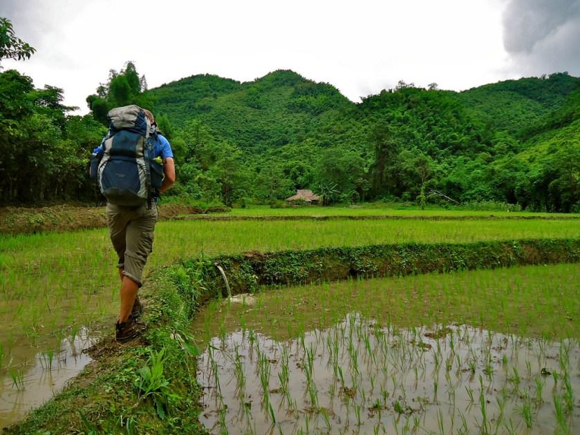 laos-trekking-rice-paddy-fair-trek-tiger-trail
