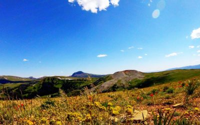 Driving the Beartooth HWY