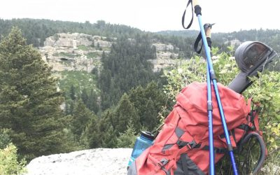 Rental Backpacks Now in Stock!