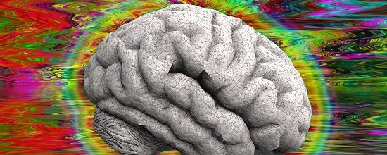 The Brain on LSD: First scans show how the drug affects the brain