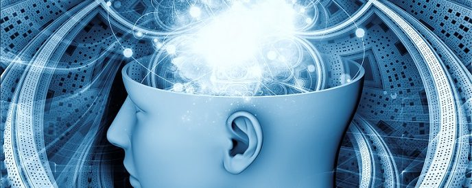 Consciousness in the Brain