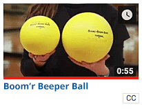 Boom'r Beeper Ball