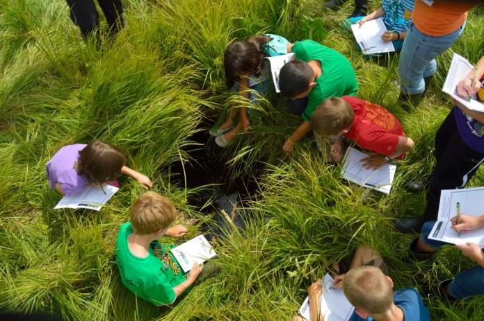 citizen-science-kids-in-grass