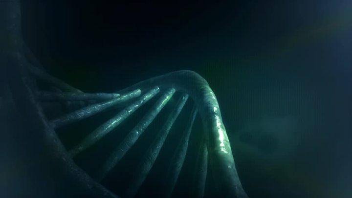 Dark DNA