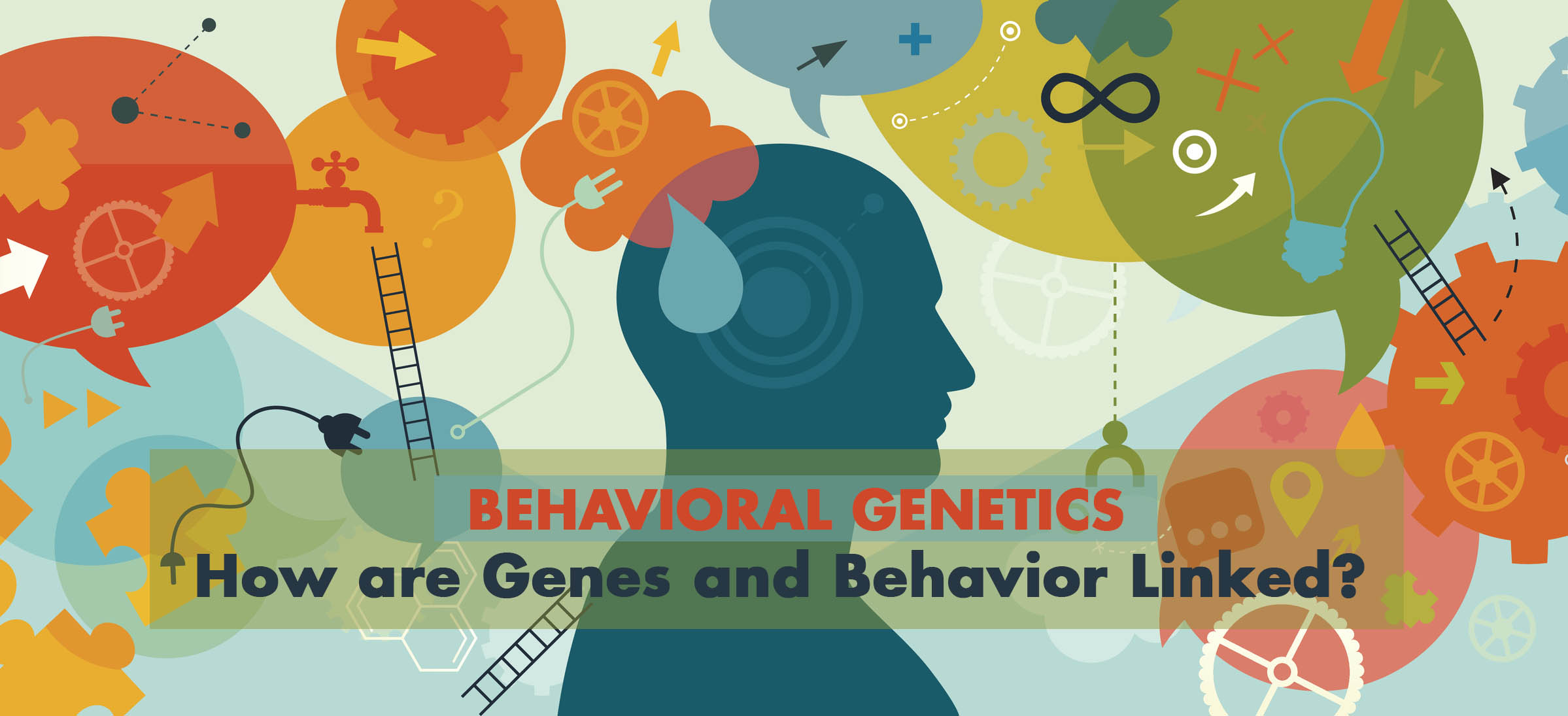 Behavioral Genetics - How are Genes and Behavior Linked?