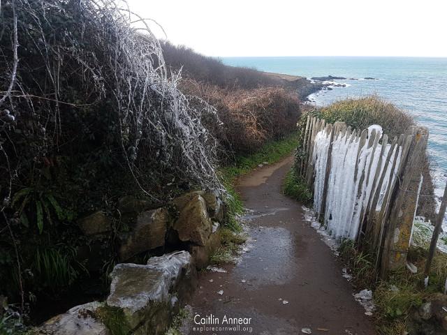 St Ives Walk