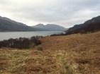 Views up the Loch